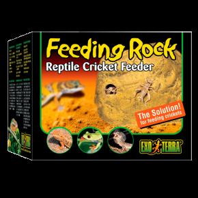 EXO TERRA Feeding Rock, distributeur de grillons