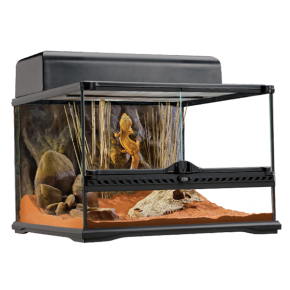 EXO TERRA Natural Terrarium Small/Low - 45x45x30 cm - Livraison gratuite