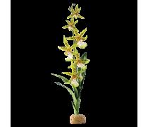 EXO TERRA Orchidée, Plante artificielle climat tropical humide