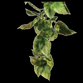 EXO TERRA Amapallo, Plante Artificielle Terrarium - Taille M