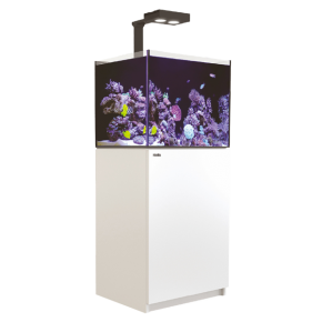 Aquarium RED SEA Reefer Deluxe 170 + Meuble + Eclairage LED - Blanc