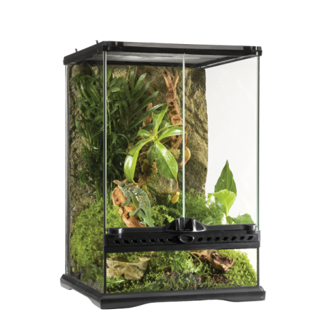 terrarium pour plantes l zard geckos serpents exo terra natural 30x30x 45 cm. Black Bedroom Furniture Sets. Home Design Ideas