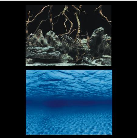 AQUA NOVA Poster Roots/Water S, Racine / Fond Marins - 60x30 cm
