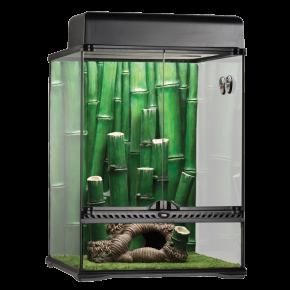 EXO TERRA Bamboo Forest, terrarium Large - 45x45x60cm - Livraison gratuite