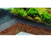 DENNERLE Deponit Mix Nano 1kg Substrat spécial pour mini-aquariums