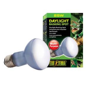 EXO TERRA Daylight Basking Spot, Ampoule Lumière du Jour - 25 Watts