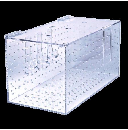 Bac d'Acclimatation XL - 50 x 25 x 25 cm