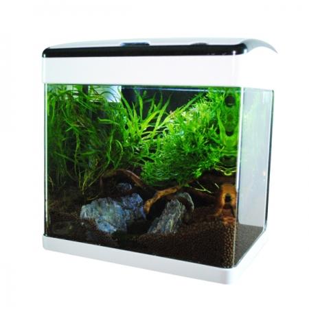 AQUA NOVA Aquarium LED Equipé - 32 Litres - Blanc