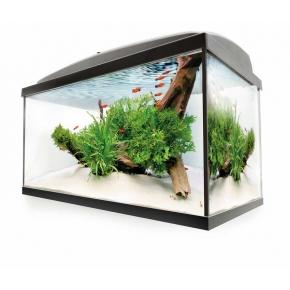 AQUAEL Leddy 60 Aquarium équipé - 54 L