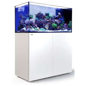 RED SEA REEFER Peninsula 500 + Meuble + Eclairage LED - Blanc