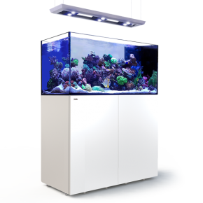 RED SEA REEFER Deluxe Peninsula 500 + Meuble + Eclairage LED - Blanc
