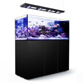 RED SEA REEFER Peninsula Deluxe 650 + Meuble - Noir