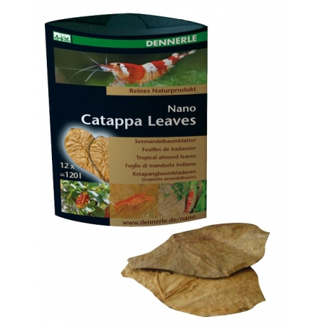 DENNERLE Nano Catappa leaves - Lot de 12