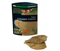 DENNERLE Nano Catappa leaves x12 feuilles