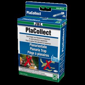 JBL PlaCollect - Piège à vers plats