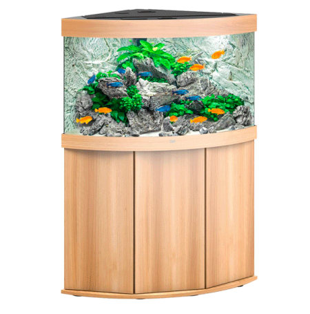 Aquarium Juwel Trigon 190 LED + Meuble - Chêne Clair