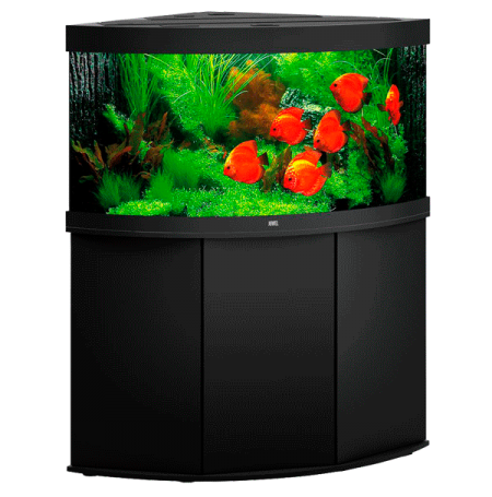aquarium juwel trigon 350 led avec meuble noir. Black Bedroom Furniture Sets. Home Design Ideas