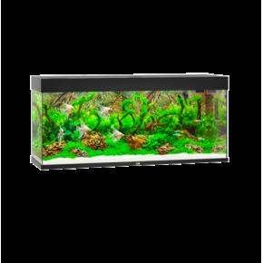 Aquarium Juwel Rio 240 LED - Noir
