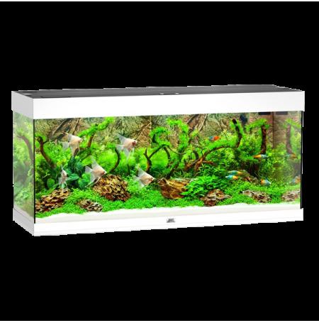Aquarium Juwel Rio 240 LED - Blanc