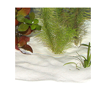 JBL Sansibar SNOW 5kg Substrat fin blanc comme neige