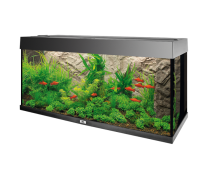 JUWEL Cache filtre Filter Cover Stone Lime 55,5 x 18,6cm