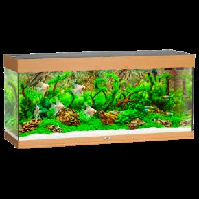 Aquarium Juwel Rio 240 LED - Chêne Clair