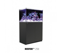Aquarium RED SEA Reefer 250 + Meuble - Noir