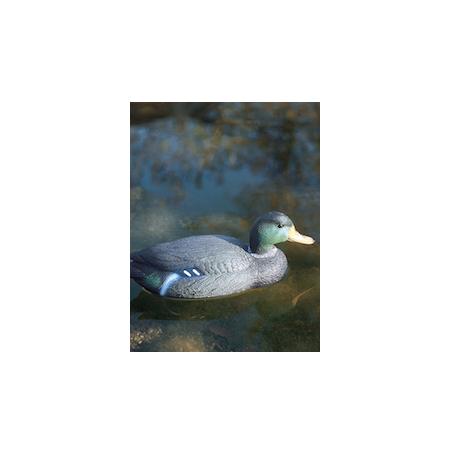 OASE Canard Colvert Mâle Figurine pour Bassin