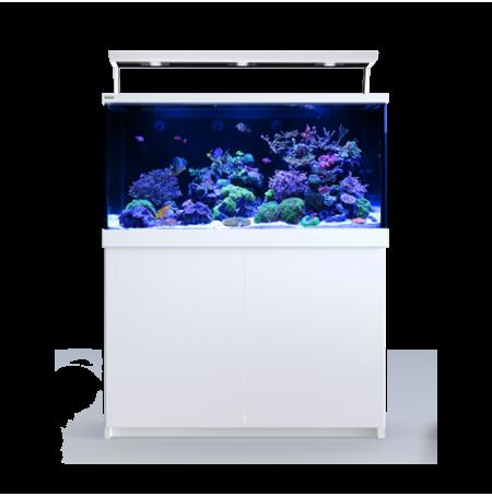 Aquarium RED SEA Max S 500 + Meuble - Blanc