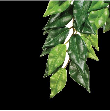 EXO TERRA Ficus, Plante Artificielle Terrarium - Taille M