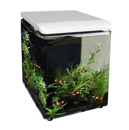 SUPERFISH Home 8 - Aquarium équipé - 8 L - Blanc