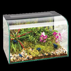 EXO TERRA Habisphère Terrarium - 30x30x45 cm - Livraison gratuite