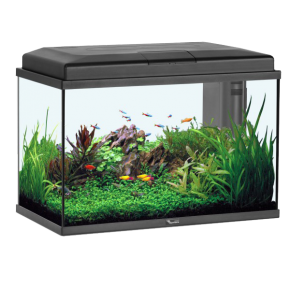 ZOLUX Aquarium Aqua Start 55 LED - 55 L - Noir