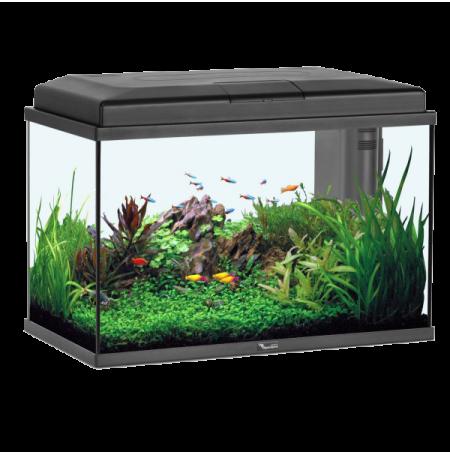 Aquarium eau douce zolux aqua start 55 led noir 55 litres for Aquarium eau douce pas cher