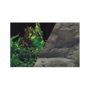 Poster de fond Rocher / Plantes - H50 x L80 cm