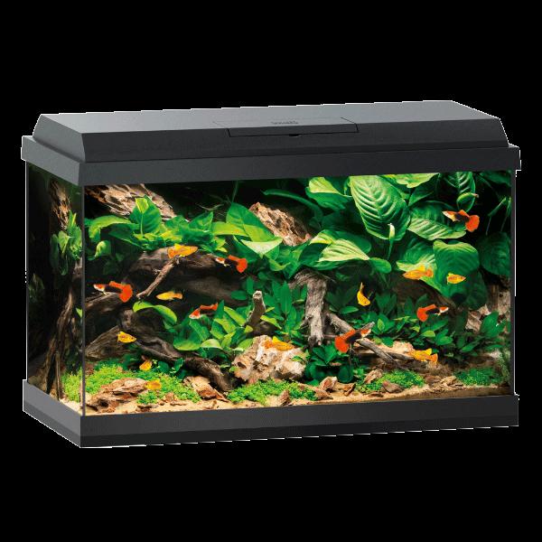 aquarium juwel primo 70 led sans meuble noir. Black Bedroom Furniture Sets. Home Design Ideas