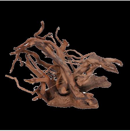 Aquavie vigne rare rouge racine pour aquarium taille m for Racine pour aquarium