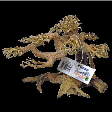 Superfish arbre bonsai pour aquarium et aquascaping taille s - Bonsai arbre prix ...