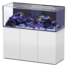 Aquarium AQUATLANTIS Aquaview 150 + Meuble Blanc - 495 Litres Eau de Mer - Livraison incluse