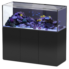 Aquarium AQUATLANTIS Aquaview 150 + Meuble Noir - 495 Litres Eau de Mer - Livraison incluse