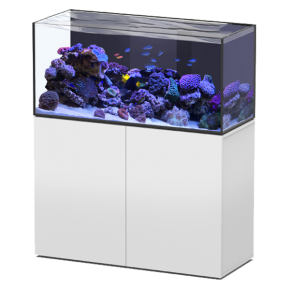 Aquarium AQUATLANTIS Aquaview 120 + Meuble Blanc - 330 Litres Eau de Mer - Livraison incluse