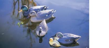 Oase canard colvert m le figurine pour bassin - Filtre bassin canard montpellier ...