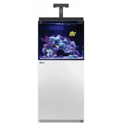 Aquarium RED SEA Max E-170 + Meuble - Blanc