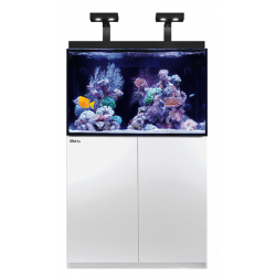 Aquarium RED SEA Max E-260 + Meuble - Blanc