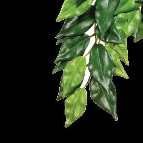 EXO TERRA Ficus - Plante Artificielle Suspendue