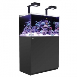 Aquarium RED SEA Reefer Deluxe 250 + Meuble + Eclairage ReefLED - noir. RED SEA Coral Pro 20 Kilos OFFERT