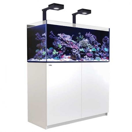 Aquarium RED SEA Reefer Deluxe 350 + Meuble + Eclairage ReefLED - Blanc. RED SEA Coral Pro 20 Kilos OFFERT