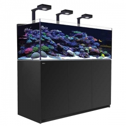 Aquarium RED SEA Reefer Deluxe XL 525 + Meuble noir + Eclairage ReefLED. RED SEA Coral Pro 20 Kilos OFFERT