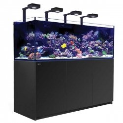 Aquarium RED SEA Reefer Deluxe XXL 750 + Meuble blanc + Eclairage ReefLED. RED SEA Coral Pro 20 Kilos OFFERT