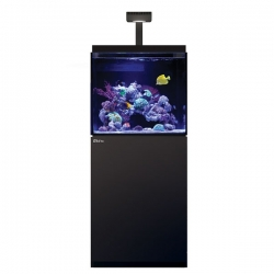 Aquarium RED SEA Max E 170 LED + Meuble noir + Eclairage ReefLED. Sac de sel RED SEA Salt 7 kg OFFERT.